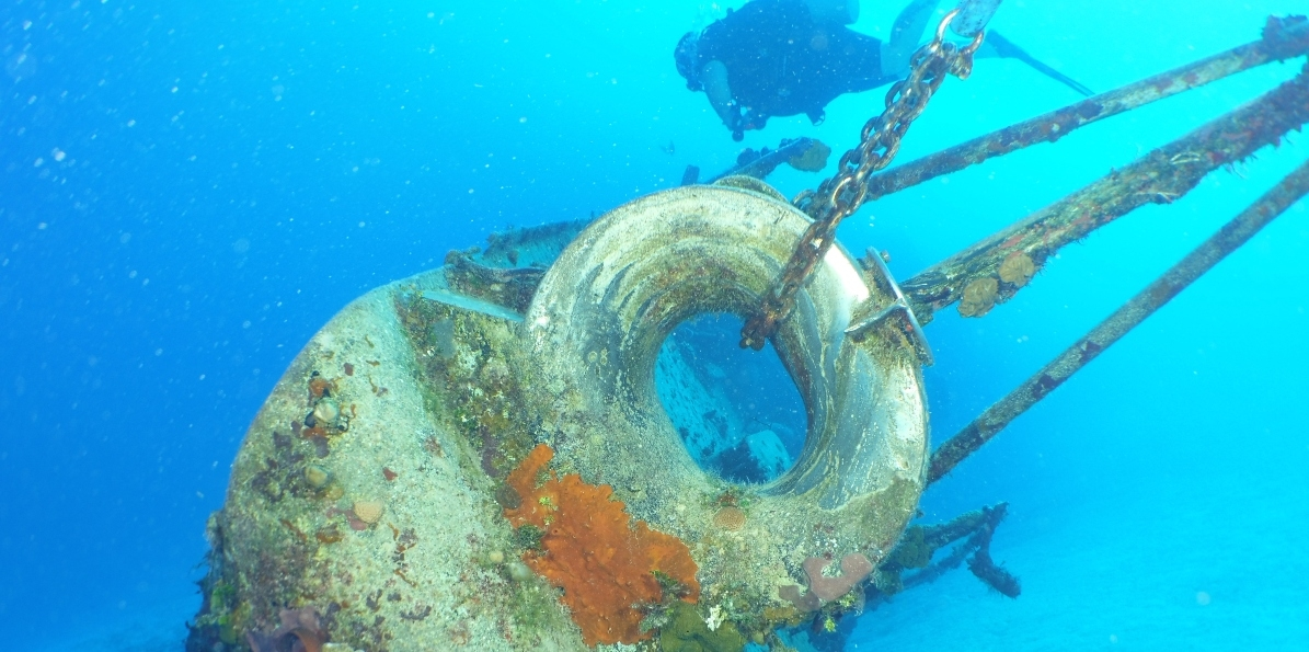 Dive on Great Wrecks!